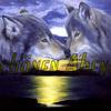 Biggiswolfsound Radio