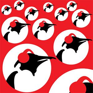 Radio Pinguin Pop