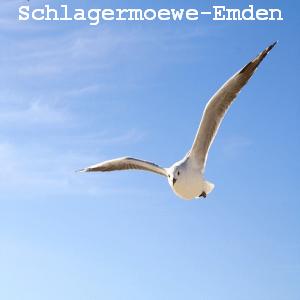Radio Schlagermöwe-Emden