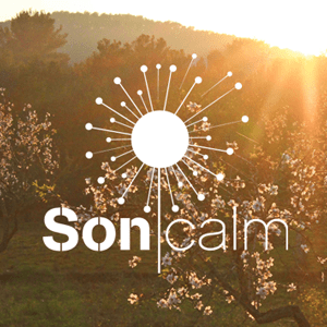 Radio SoniCalm