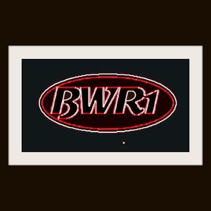 Radio BWR1