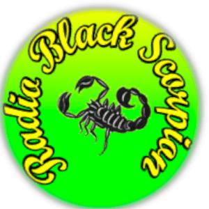 Radio Radio Black Scorpion