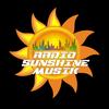 Sunshinemusik Rock