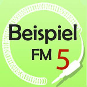 BeispielFM 5